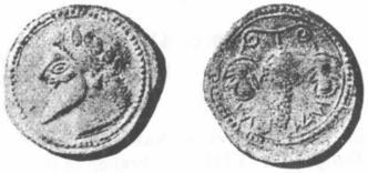 grecque à la grappe de raisin Fig83